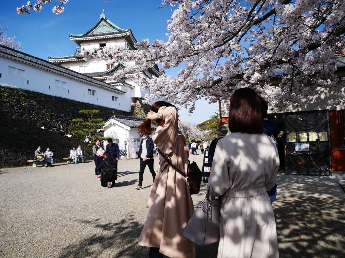 桜満開の和歌山城へ  2021-03-28 00:00 _b0093754_23254933.jpg