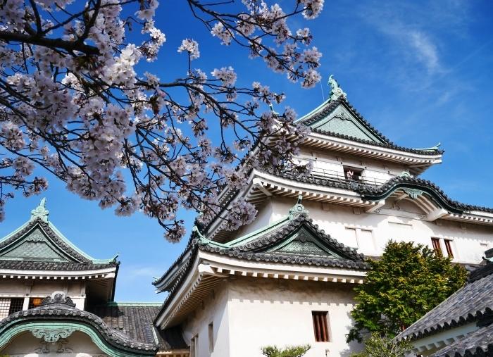 桜満開の和歌山城へ  2021-03-28 00:00 _b0093754_23261828.jpg