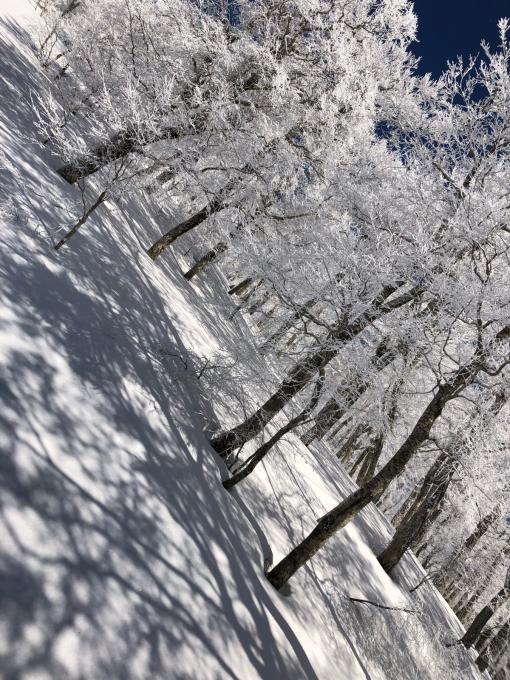 冬から春へ_b0093660_16382973.jpg