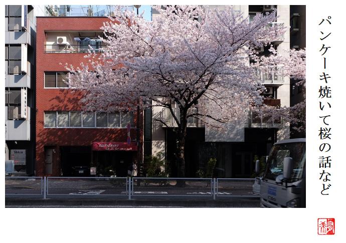 パンケーキ焼いて桜の話など_a0248481_22442279.jpg
