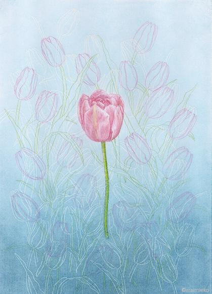 色鉛筆は、線を描くのが得意な画材だから_b0209395_10323369.jpg