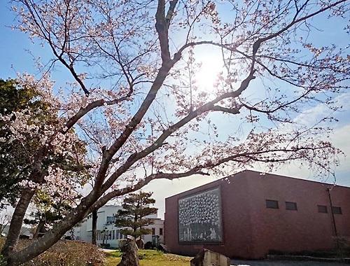 三良坂平和美術館にて『Yoko-Bon\'s World ! 絵本と猫と人形たちと』がはじまりました。_d0077603_12050537.jpg