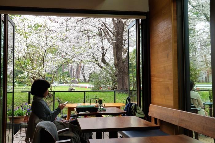 大宮公園に接した カフェ店_d0150720_11010942.jpg