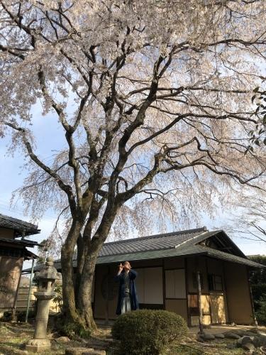 桜の樹の下で篠笛の音色_a0197730_22503236.jpeg
