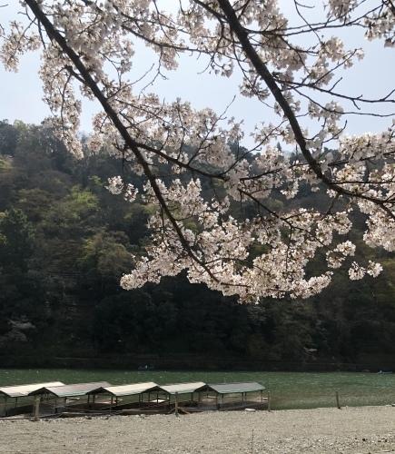 桜の樹の下で〜 篠笛の音色part2_a0197730_22103957.jpeg