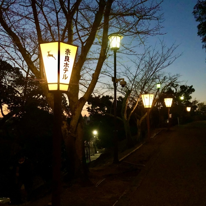 奈良の旅 最終回 奈良ホテル_a0092659_17044676.jpeg