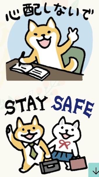 柴犬さんのツボ関連のお知らせ_b0011075_16085030.jpeg