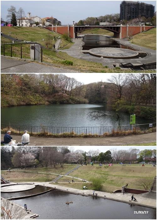 お花見、長池公園と近場でお花見_c0051105_19470459.jpg