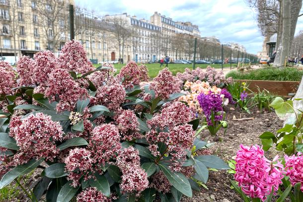 パリのおさんぽ、そして1日からのイベントのご案内_c0024345_18361796.jpg