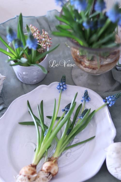 3月Living flower 『Pastel color flower bottle arrangement』_e0158653_09404791.jpg