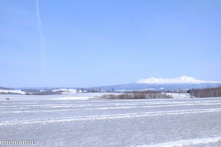 飛行機雲と大雪連峰と~3月の美瑛_d0340565_19260630.jpg