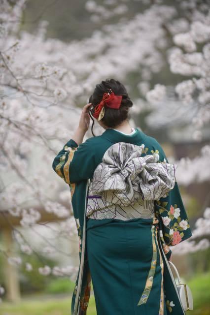 年によっては桜の開花時期がずれてくれて場所........_b0194185_18442254.jpg