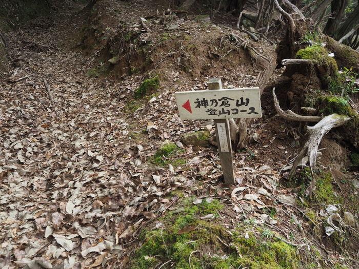 神ノ倉山登山(満開の桜)_c0116915_00434137.jpg