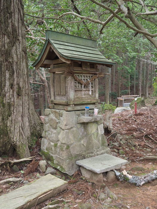 神ノ倉山登山(満開の桜)_c0116915_00450837.jpg