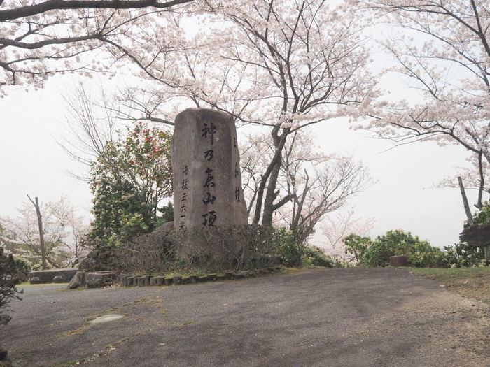 神ノ倉山登山(満開の桜)_c0116915_00510216.jpg