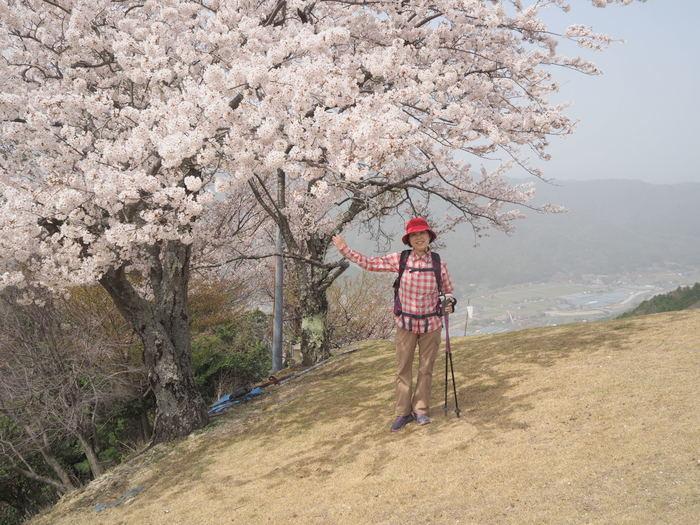 神ノ倉山登山(満開の桜)_c0116915_00591655.jpg