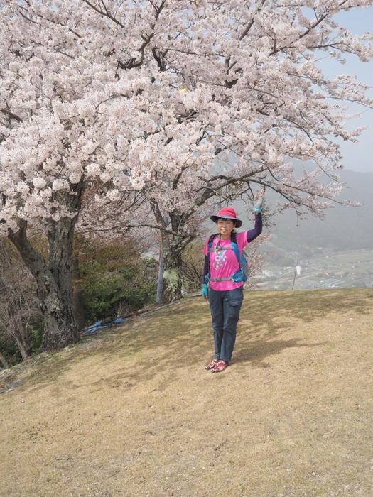 神ノ倉山登山(満開の桜)_c0116915_00593248.jpg