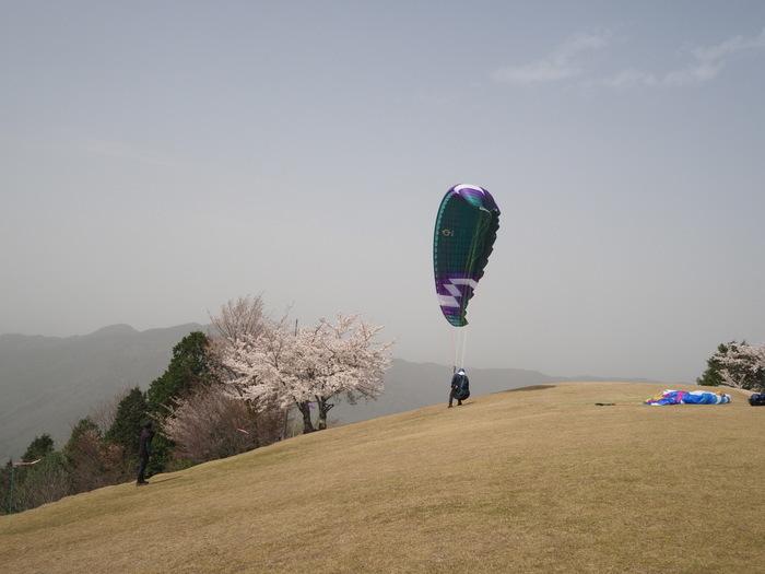 神ノ倉山登山(満開の桜)_c0116915_01005966.jpg