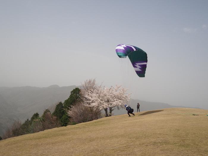 神ノ倉山登山(満開の桜)_c0116915_01011189.jpg