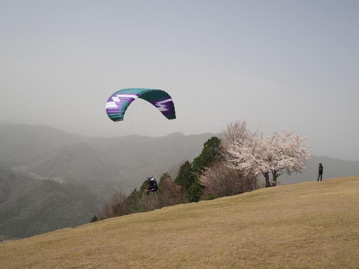 神ノ倉山登山(満開の桜)_c0116915_01012328.jpg