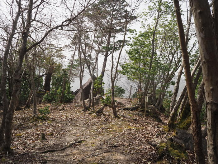神ノ倉山登山(満開の桜)_c0116915_01075789.jpg