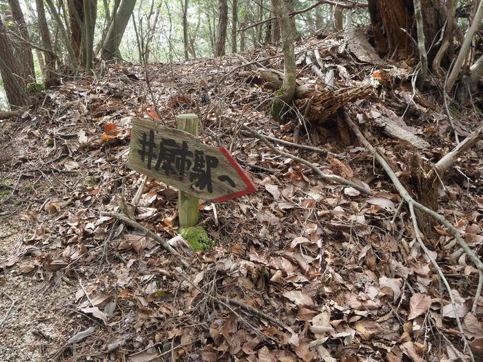神ノ倉山登山(満開の桜)_c0116915_01083379.jpg