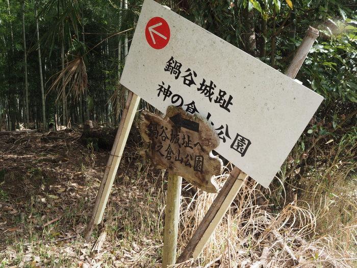神ノ倉山登山(満開の桜)_c0116915_01091269.jpg
