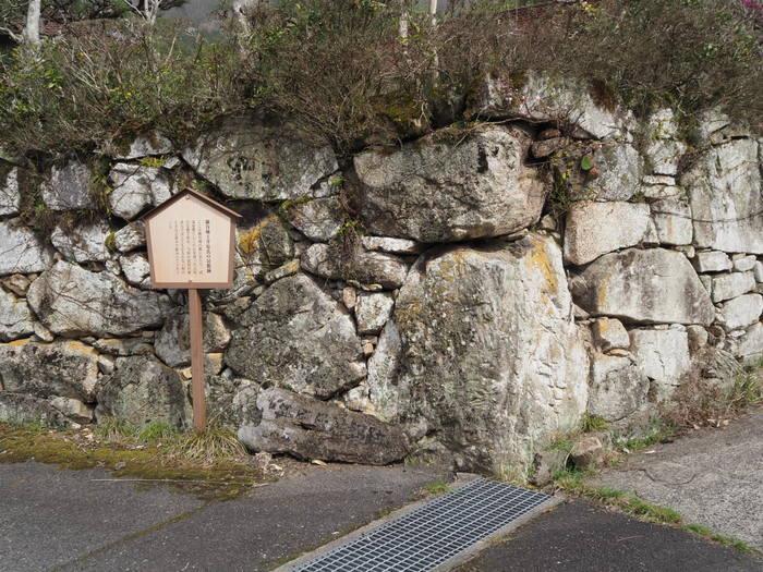 神ノ倉山登山(満開の桜)_c0116915_01102254.jpg