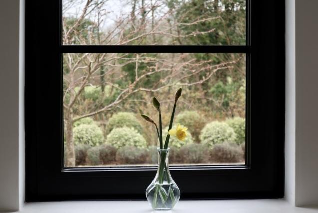 春はDIYプロジェクト_f0045624_00574519.jpeg