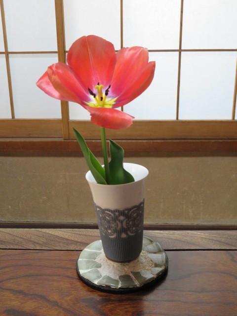 春の花と食を楽しむ_f0329849_13000020.jpg