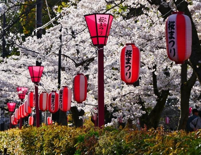 和歌山城公園にて  2021-04-01 00:00_b0093754_23334938.jpg