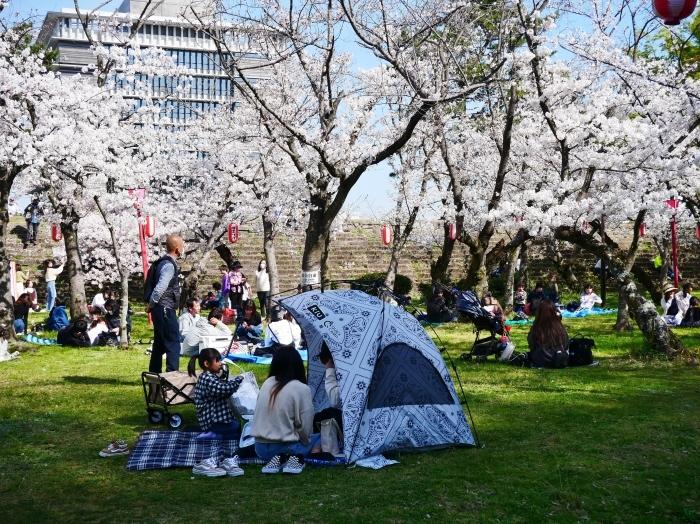 和歌山城公園にて  2021-04-01 00:00_b0093754_23344077.jpg
