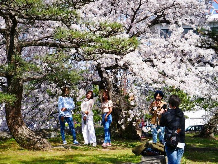 和歌山城公園にて  2021-04-01 00:00_b0093754_23354203.jpg