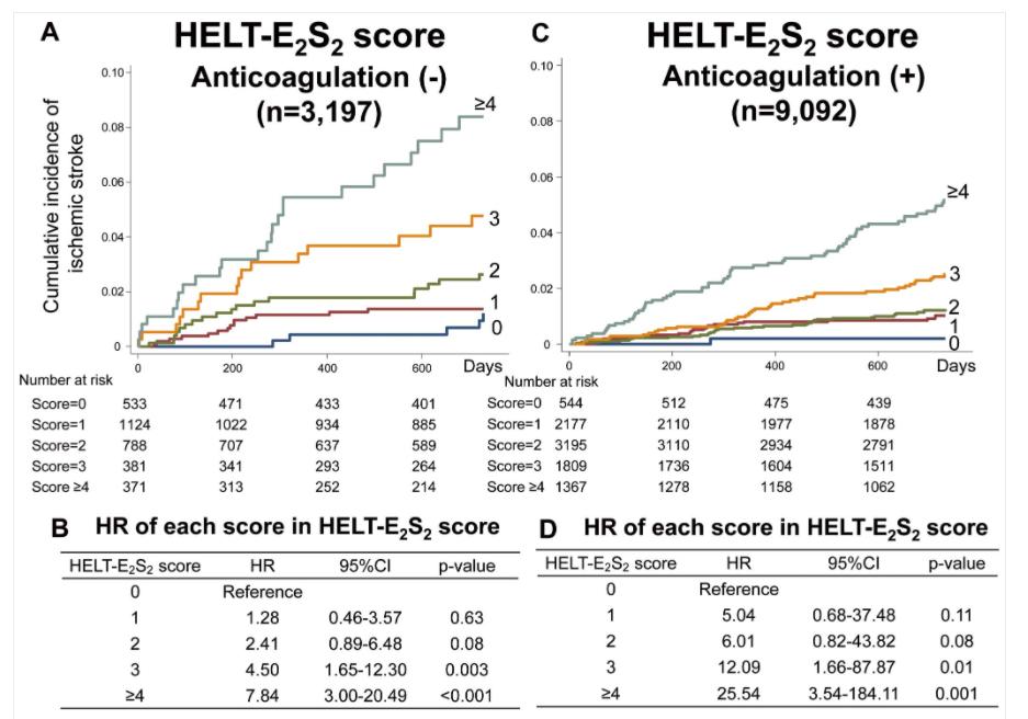 日本人心房細動例の新しい脳梗塞リスク予知スコア:HELT-E2S 2スコア_a0119856_07141063.png