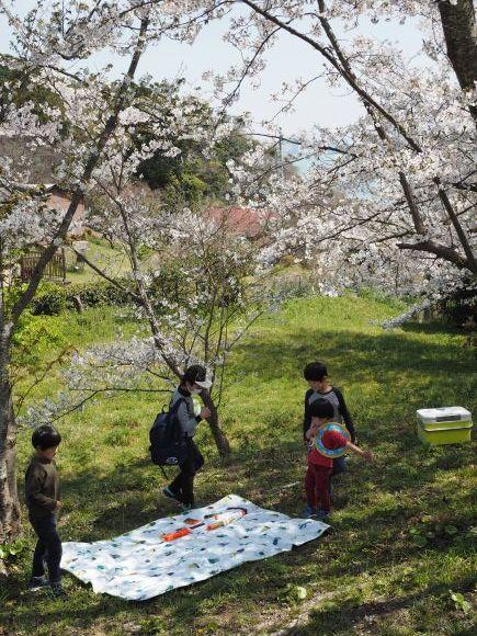 2021/3/31 能古博物館でお花見_f0201157_22023037.jpg