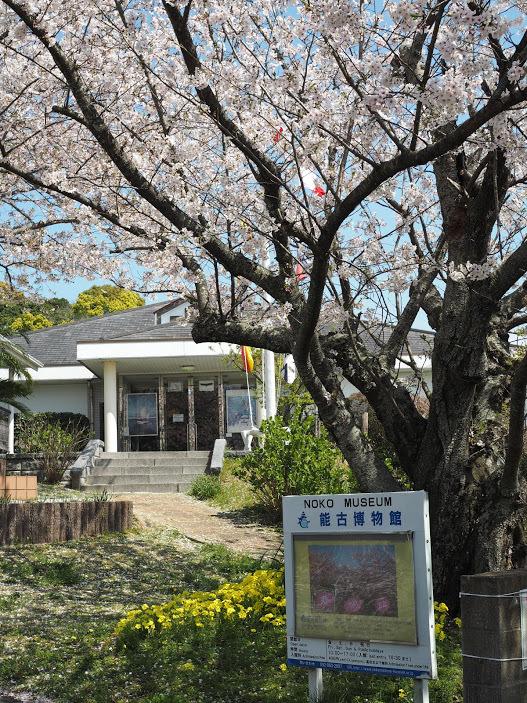 2021/3/31 能古博物館でお花見_f0201157_22103339.jpg