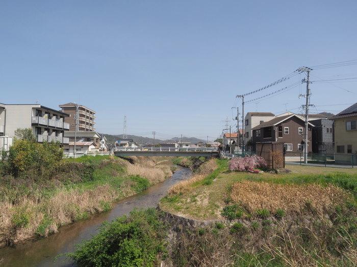 花散歩(石内川と八幡川沿い)_c0116915_00370234.jpg