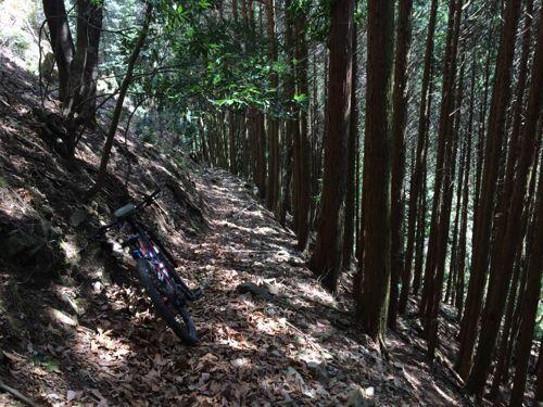 久しぶり e-Bike でお出かけ_d0144550_16315859.jpg