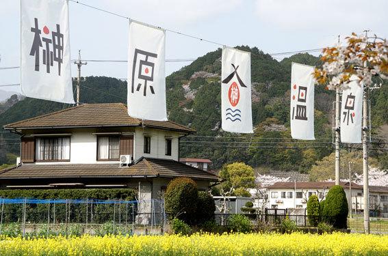 歓迎垂れ幕と鯉のぼり_b0145257_15334221.jpg