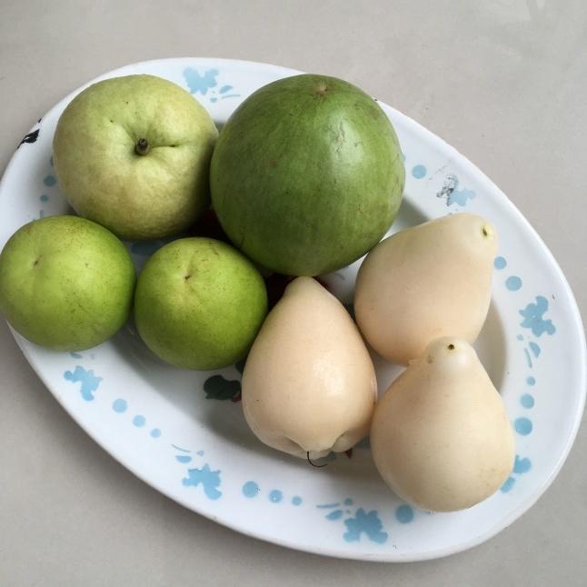 台湾の果物 白いレンブ「白玉蓮霧」_e0209865_09421183.jpeg