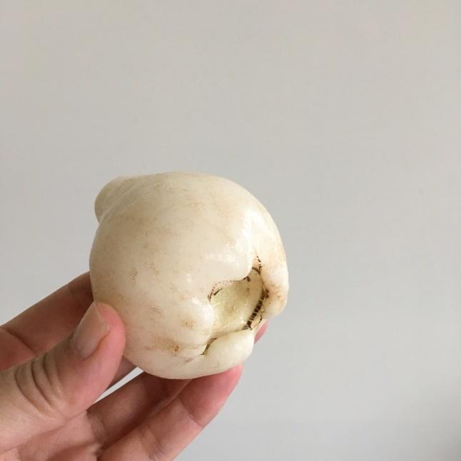 台湾の果物 白いレンブ「白玉蓮霧」_e0209865_09445808.jpeg
