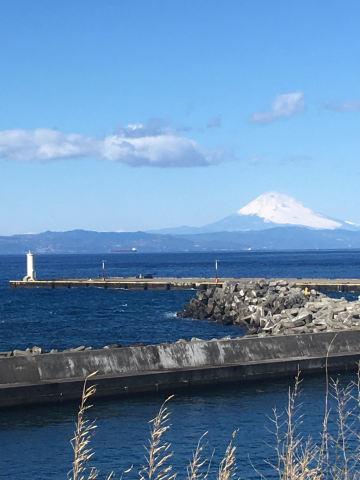 ご報告 伊豆大島に移住&古民家カフェをはじめました_b0053082_17055225.jpg