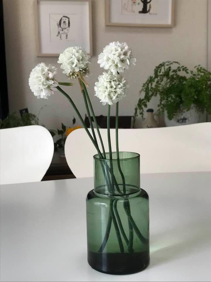 ベランダの花を飾ってみました。_c0186612_11281045.jpg