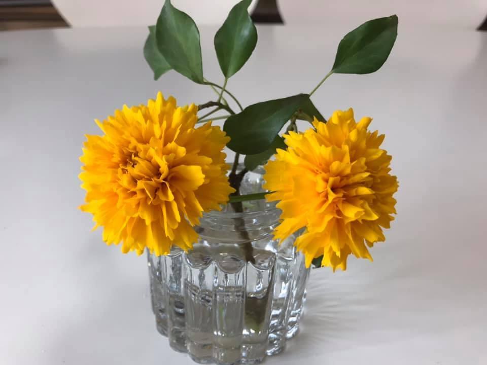 ベランダの花を飾ってみました。_c0186612_11291716.jpg