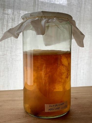 麦茶ベースのコンブチャ_e0243332_17274512.jpeg