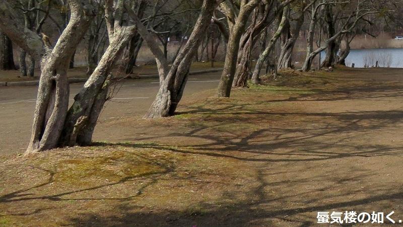 「ゆるキャン△S2」舞台探訪09 大間々岬の冬その1/2 山中湖村(第6話)_e0304702_20531563.jpg