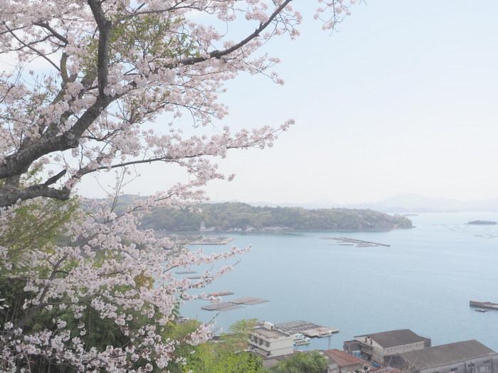 正福寺山公園の桜_c0116915_00553693.jpg