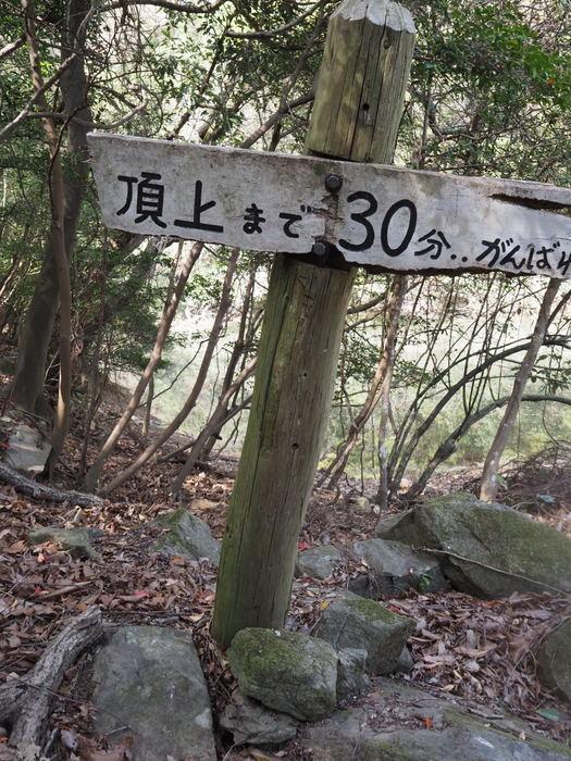 朝日山登山_c0116915_23255305.jpg
