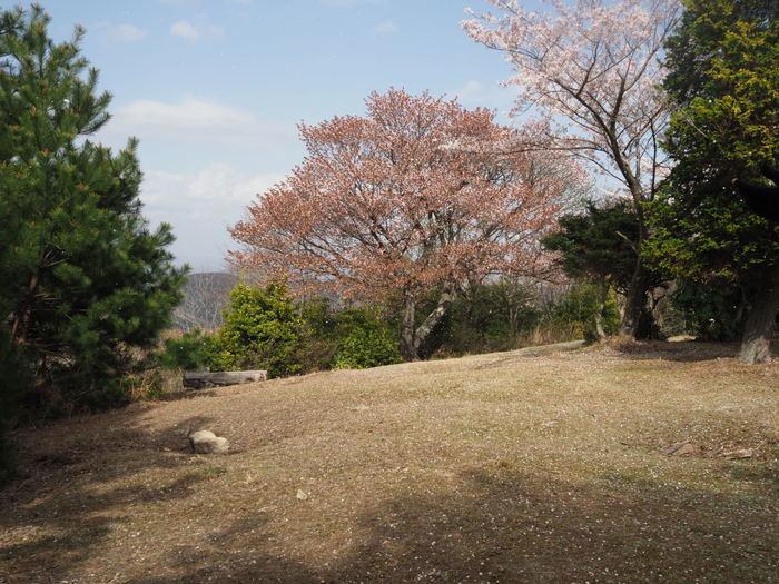 朝日山登山_c0116915_23343947.jpg