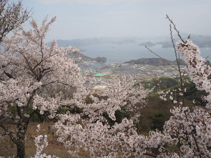 朝日山登山_c0116915_23351352.jpg